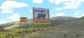 Comuneros denuncian peligro por presencia de toros bravos en Azángaro