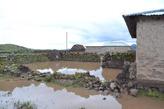 Pomata: 3 viviendas colapsadas y 23 afectadas tras desborde de río Collini