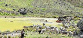AYAVIRI: Creciente contaminación en ríos de Lampa y Melgar indignan a población local